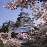 Tour Alla Conquista del Giappone
