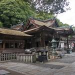 Shikoku in Libertà