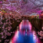 Luna di Miele in Giappone