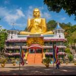 Tour Meraviglioso Sri Lanka